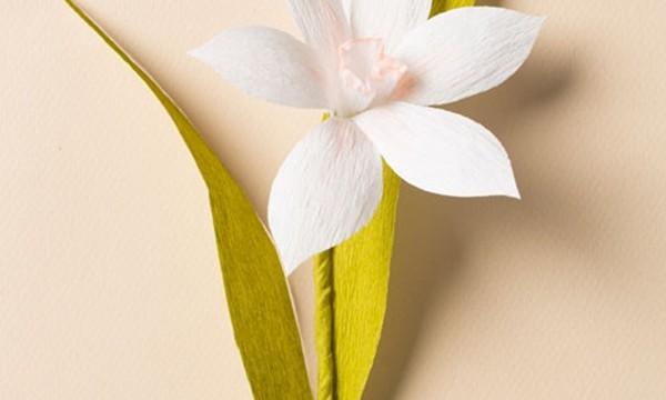 20 DIY Paper Flower Tutorials 17