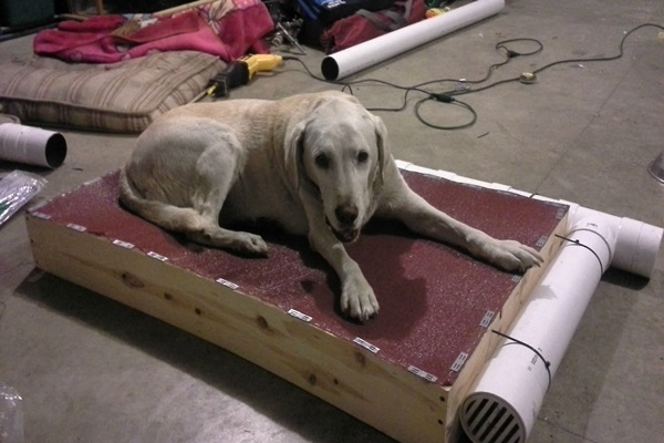 Diy Redneck Air Conditioned Dog Bed Tutorial