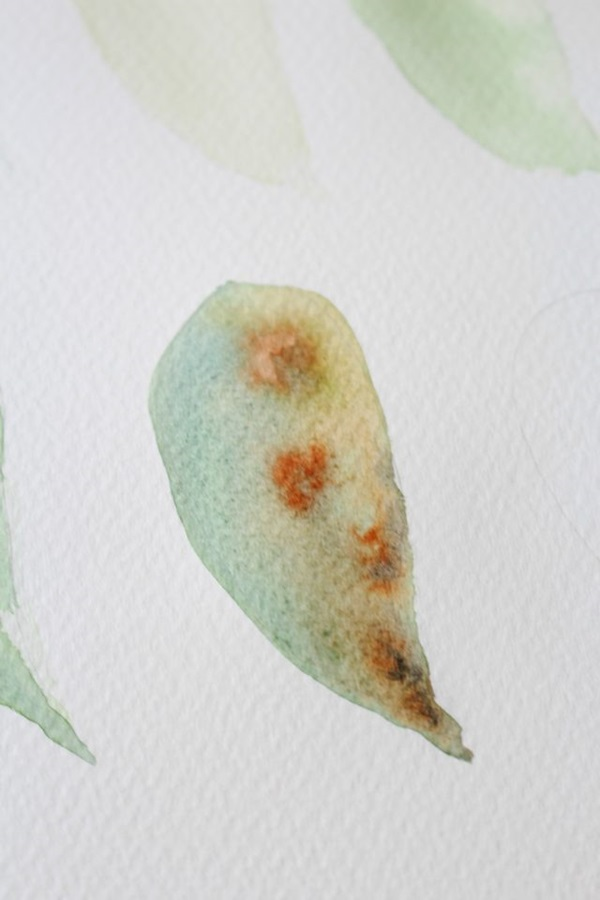 How to Paint a Basic Leaf with Water color 11