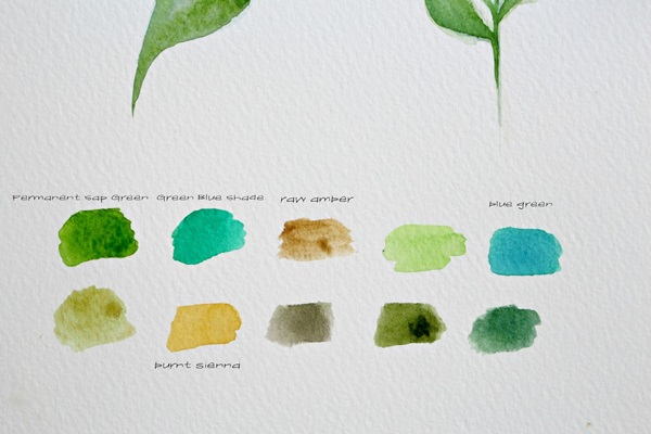 How to Paint a Basic Leaf with Water color 2
