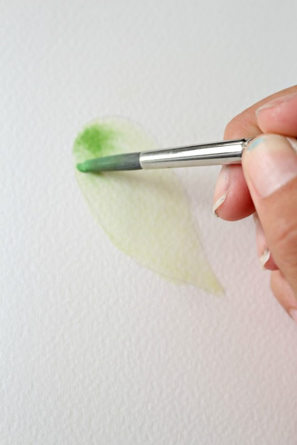 How to Paint a Basic Leaf with Water color 5