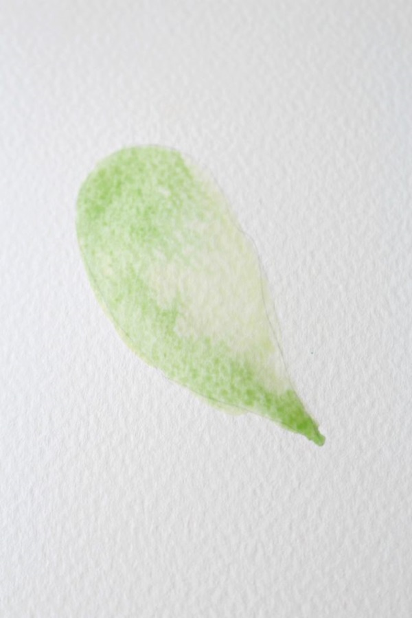 How to Paint a Basic Leaf with Water color 6