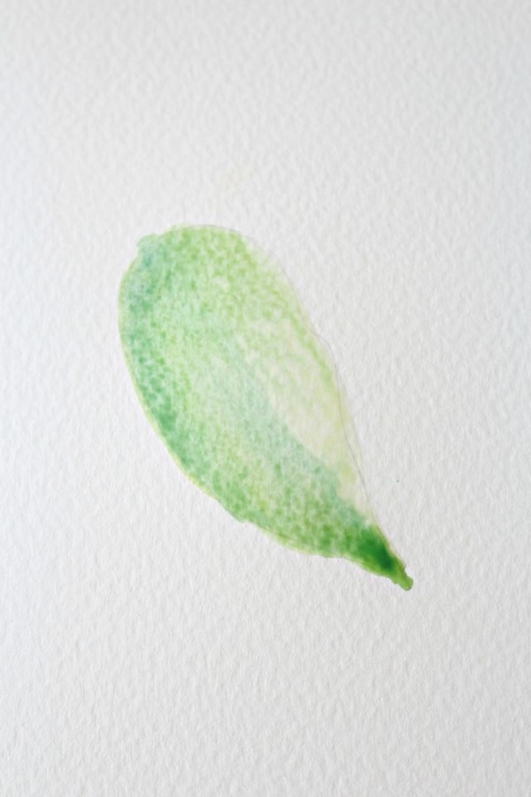 How to Paint a Basic Leaf with Water color 7