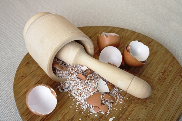 10 Things to do with Eggshells 4