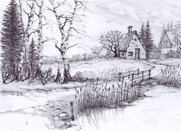 40 Incredible Pencil Drawings of Nature you have never seen before 2