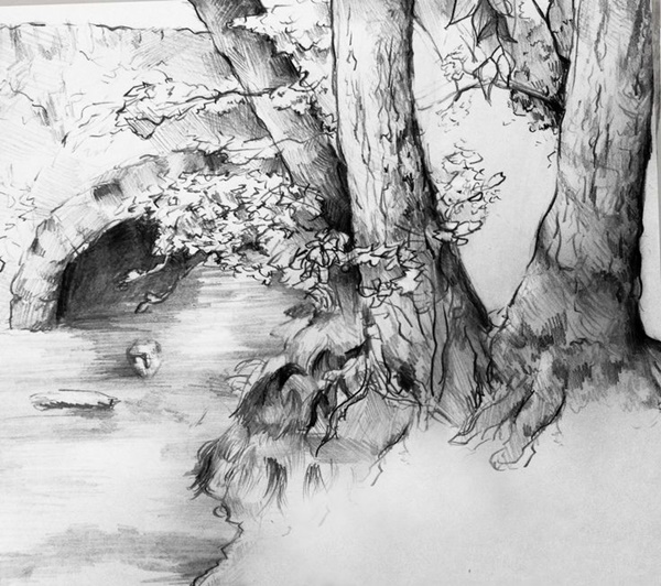 40 Incredible Pencil Drawings of Nature you have never seen before 14
