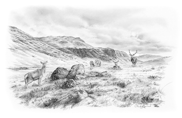 40 Incredible Pencil Drawings of Nature you have never seen before 28