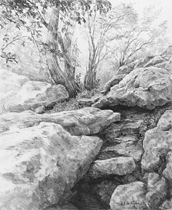 40 Incredible Pencil Drawings of Nature you have never seen before 29