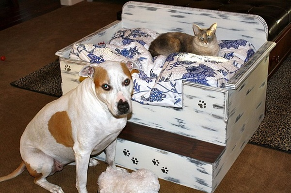 10 Ideas to Reuse Old Furnitures into Pet Beds 1