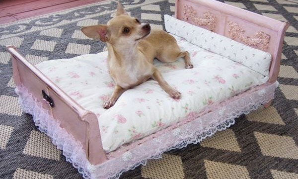 10 Ideas to Reuse Old Furnitures into Pet Beds Feature Image