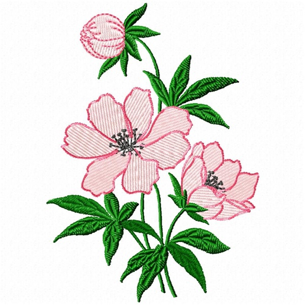 335 Free Hand Embroidery Flower Designs and Ideas 8