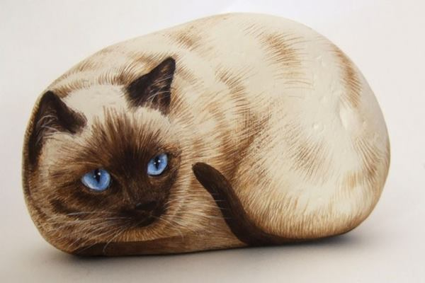 40 Cute Pictures of Animals Painted on Rocks Feature Image