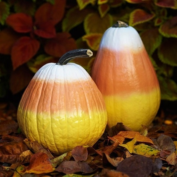 40 Cute and Easy Pumpkin Painting Ideas 34