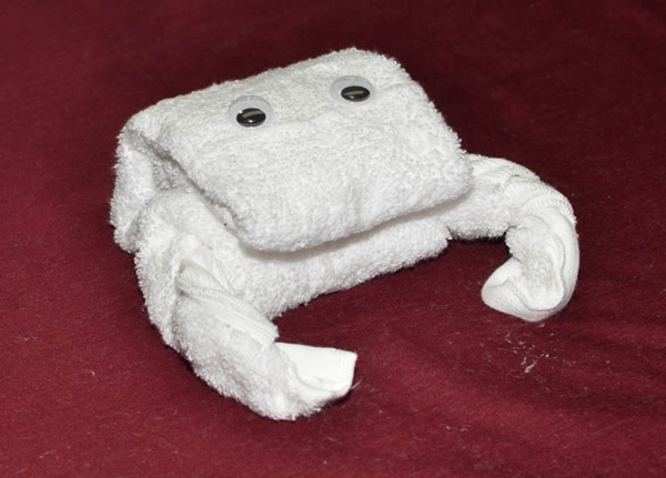 how-to-make-towel-animals-4