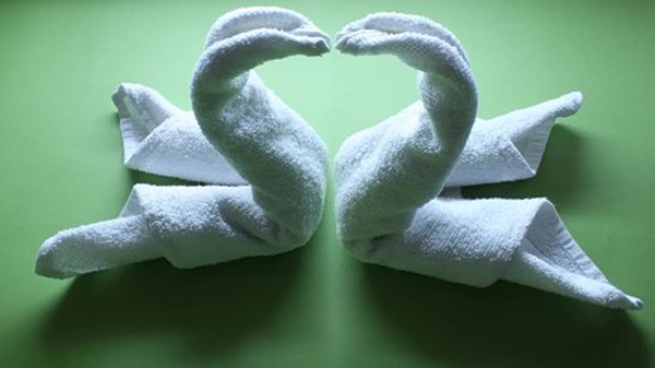 how-to-make-towel-animals-8