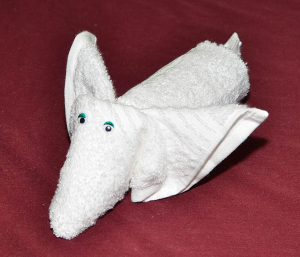 how-to-make-towel-animals-9