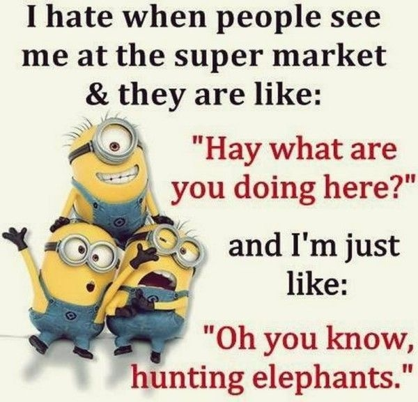 30-funny-minion-quotes-with-pictures-1-1