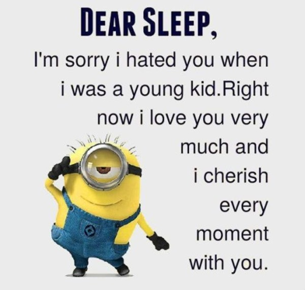 30-funny-minion-quotes-with-pictures-1-10