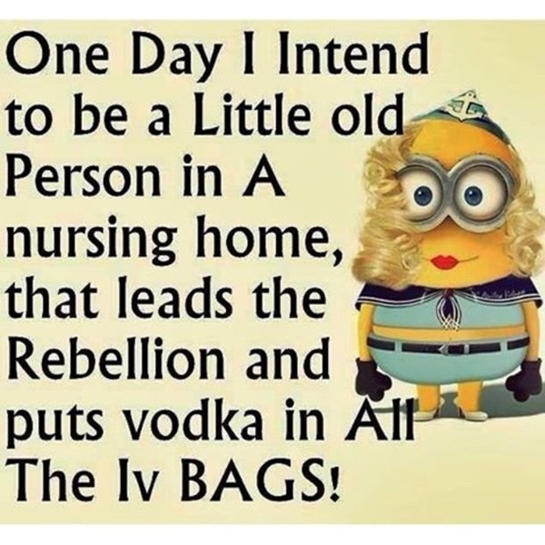 30-funny-minion-quotes-with-pictures-1-15