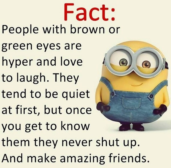 30-funny-minion-quotes-with-pictures-1-17
