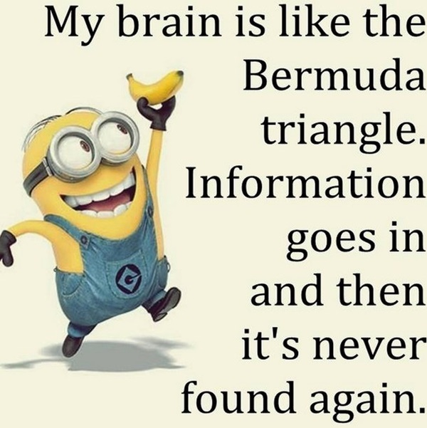 30-funny-minion-quotes-with-pictures-1-18