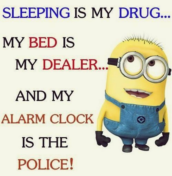 30-funny-minion-quotes-with-pictures-1-22