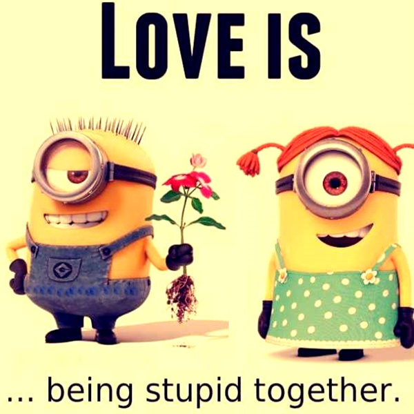 30-funny-minion-quotes-with-pictures-1-28