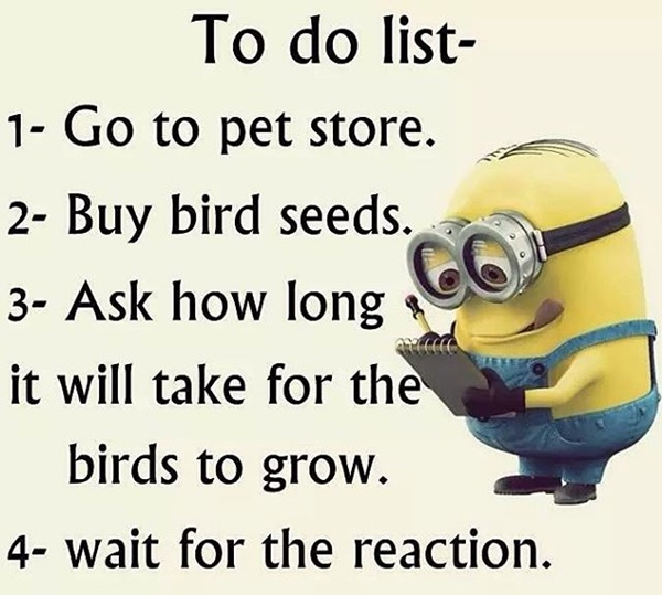 30-funny-minion-quotes-with-pictures-1-30
