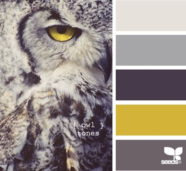 30-receiving-color-palettes-inspired-by-animals-13