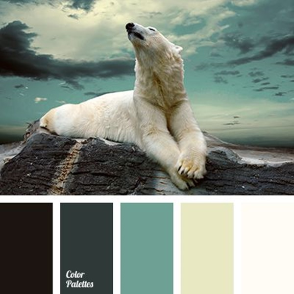 30-receiving-color-palettes-inspired-by-animals-17