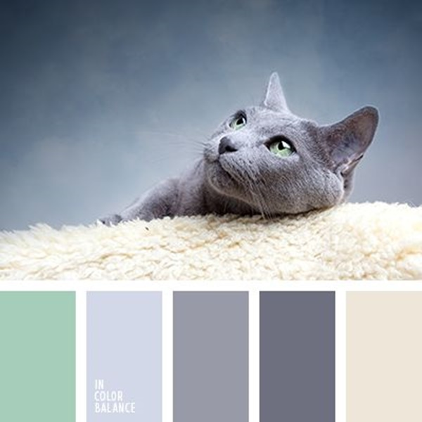30-receiving-color-palettes-inspired-by-animals-20