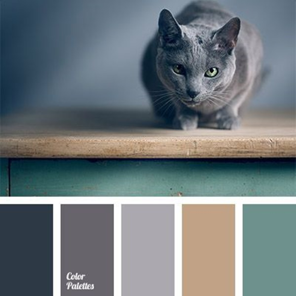 30-receiving-color-palettes-inspired-by-animals-21