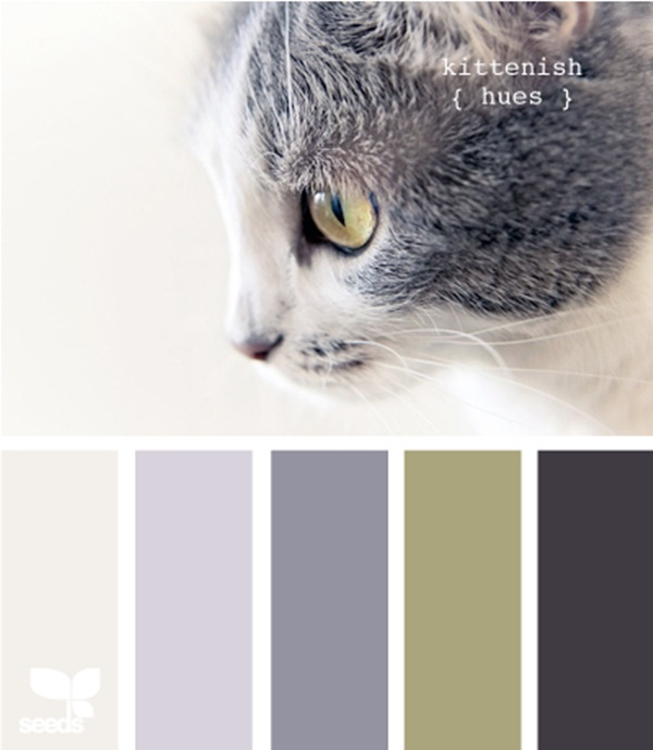 30-receiving-color-palettes-inspired-by-animals-23