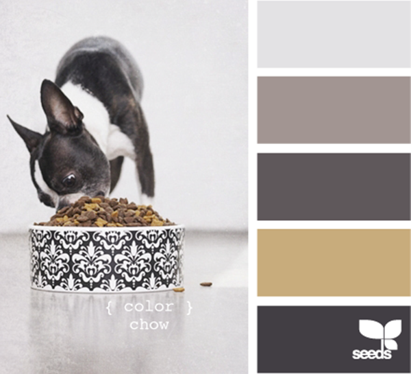 30-receiving-color-palettes-inspired-by-animals-27