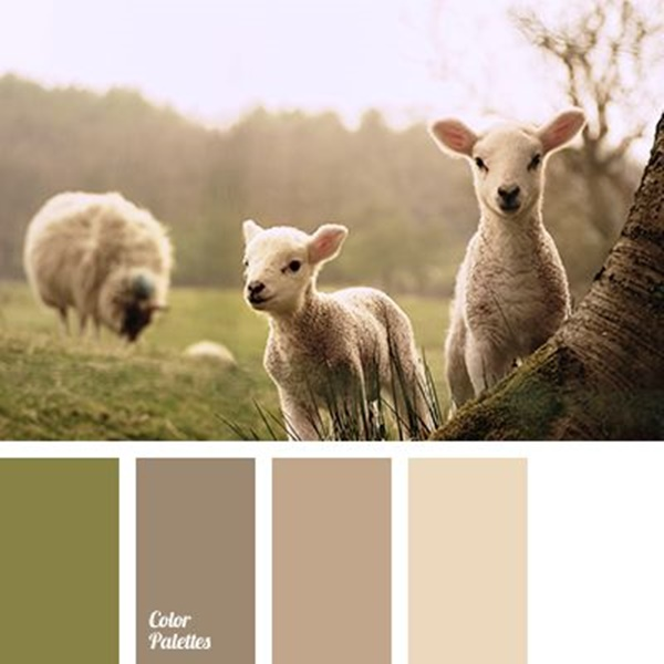30-receiving-color-palettes-inspired-by-animals-7
