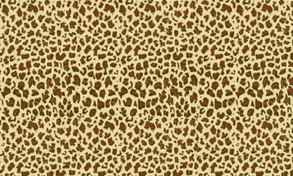 beautiful-illustrations-of-animal-patterns-24