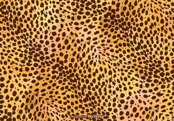 beautiful-illustrations-of-animal-patterns-25