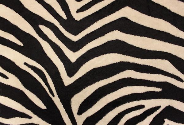 beautiful-illustrations-of-animal-patterns-30