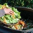 simple methods of recycling kitchen wastes Feature Image