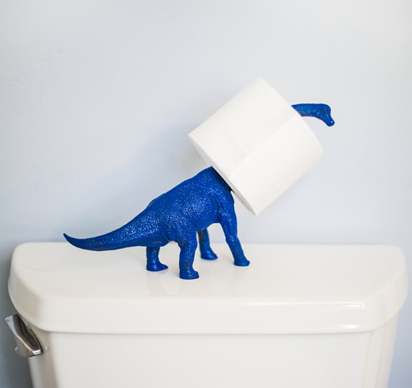 amazing ideas of DIY toilet paper holder 1