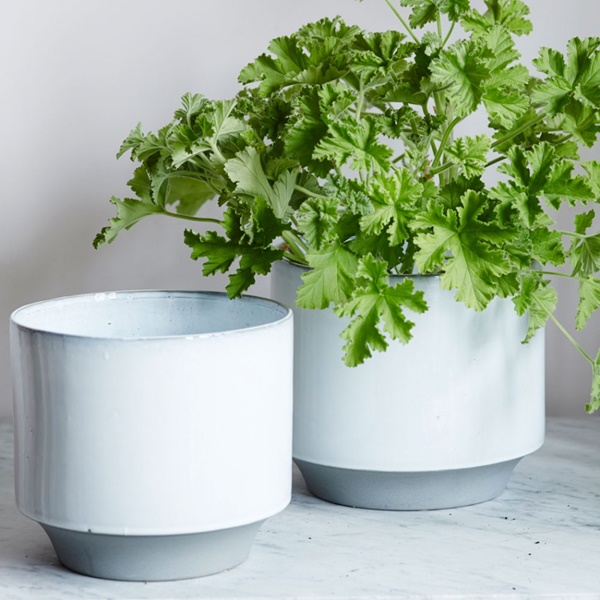 choosing small plant pot containers 8