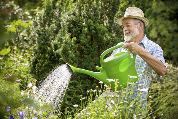 tools for gardening every beginner should know feature image
