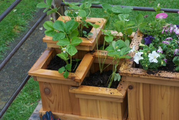DIY-Outdoor-Wooden-Planter-Box