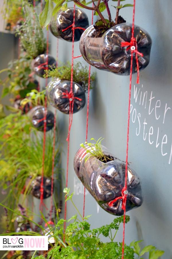 Bottle-Garden-Ideas-which-Are-Borderline-Genius