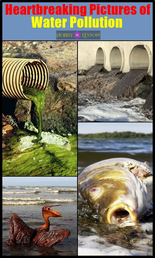 Heartbreaking Pictures of Water Pollution