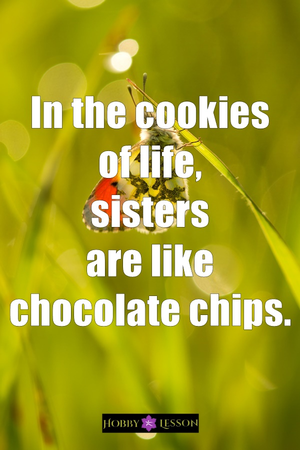 Cute Brother and Sister Quotes and Sayings