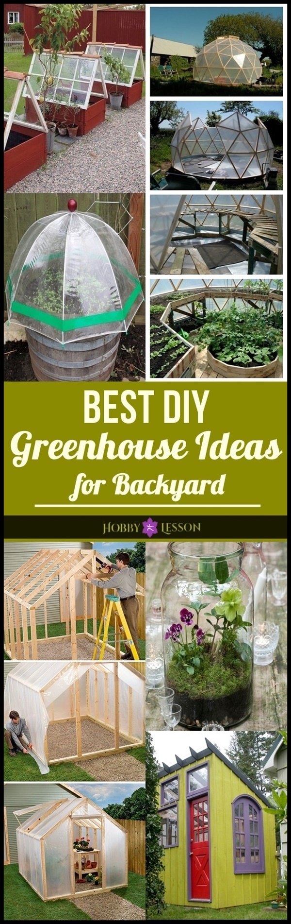 Best DIY Greenhouse Ideas for Backyard