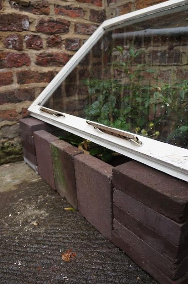 Best DIY Greenhouse Ideas for Backyard