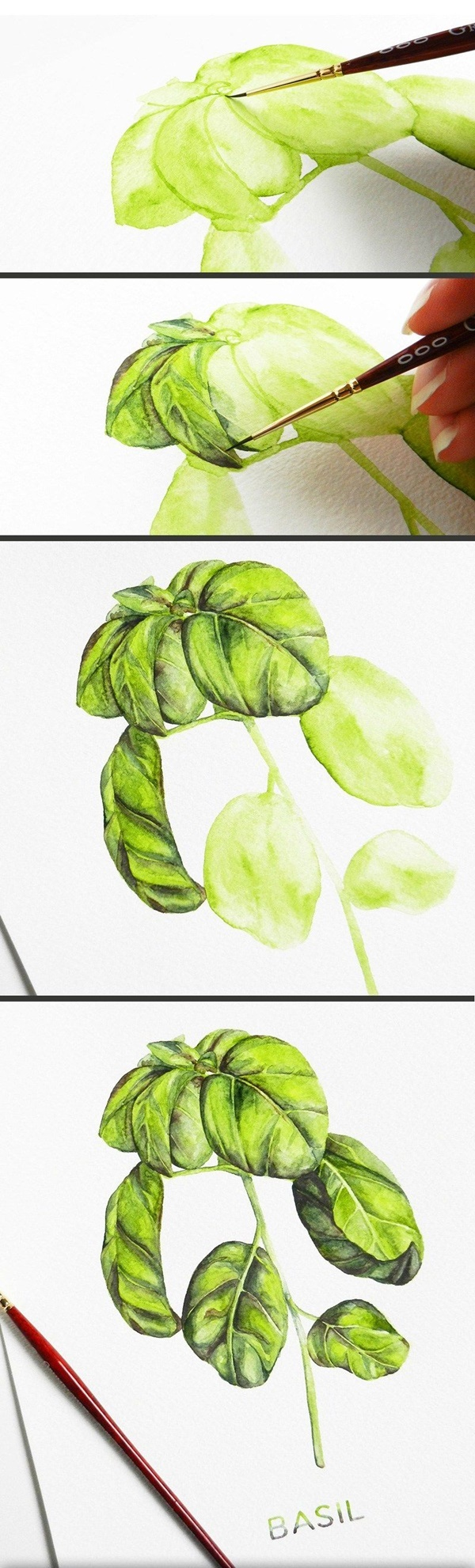Step By Step Easy Watercolor Paintings Example for Beginners