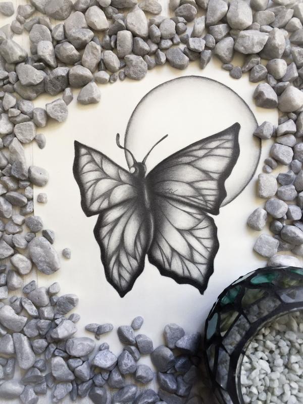 Schöne einfache Schmetterlingszeichnungen im Bleistift